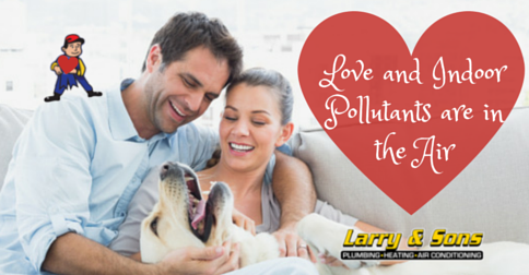 Love & Indoor Air Pollutants - Improve Indoor Air Quality