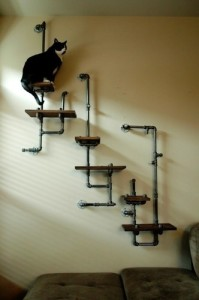 Pipe Cat Shelves