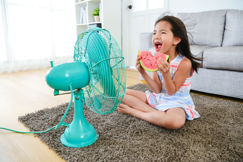 Get the Most Out of Your Air Conditioner This Summer!